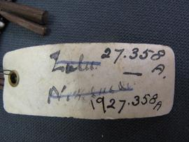 Rectangular parchment label tied to object (view 1)